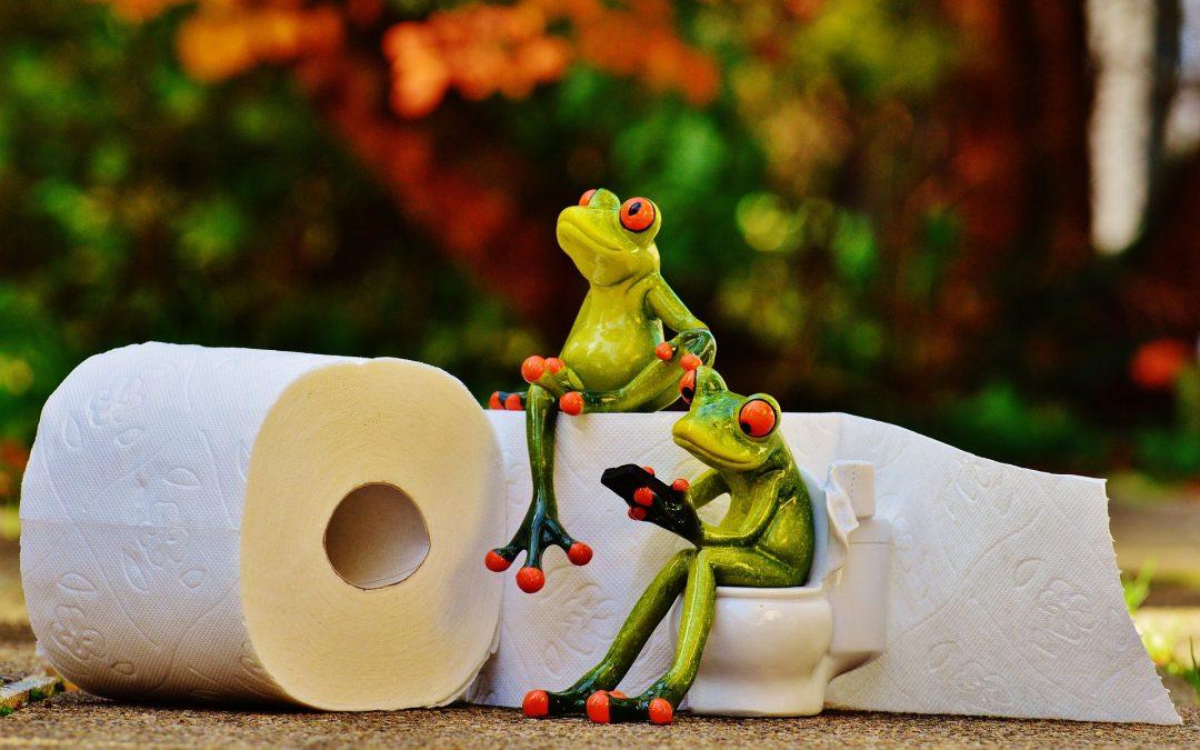 Vécé duguláselhárítás fillérekből